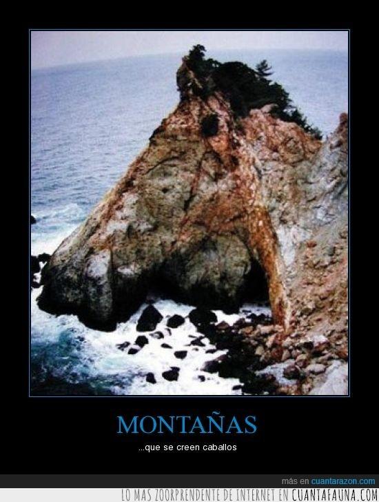 caballo,ilusión optica,montaña