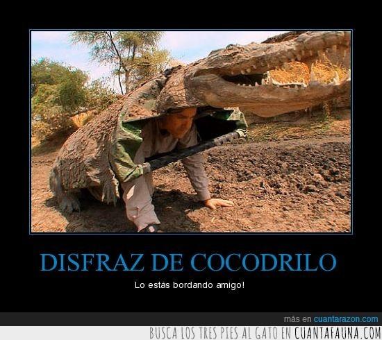 cocodrilo,disfraz