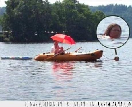 en lago,foca