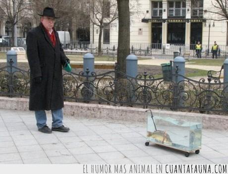 pasear,pecera,pez