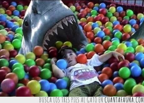 bolas,niño,piscina,tiburón