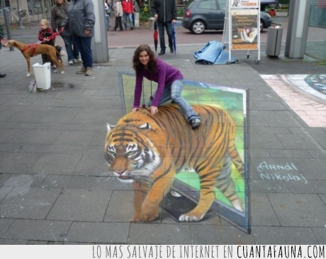 arte,Nikolaj Arndt,salvaje,tigre