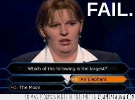 16021 - -¿QUE ES MAS GRANDE? - -Un elefant o la LUNA? -emmm...un elefante