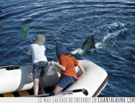 barco,peligro,pescar,tiburón