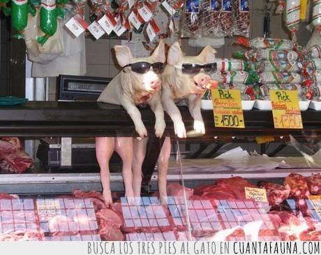 cerdo,jamones,morena