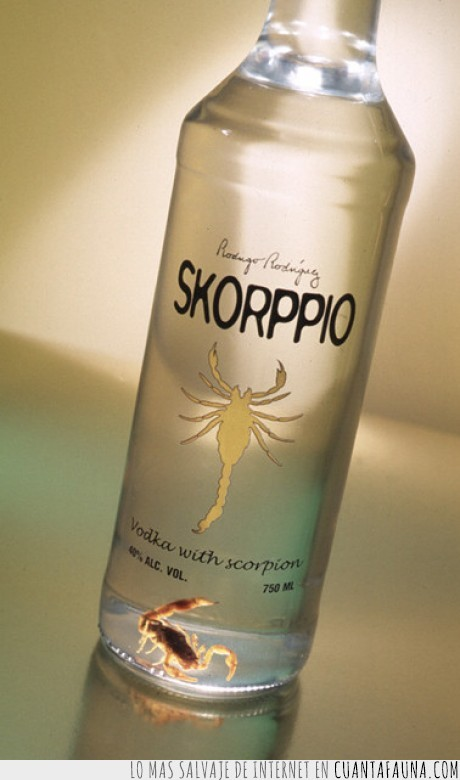 escorpion,vodka