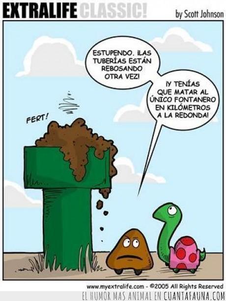 hijoeputa,tortuga