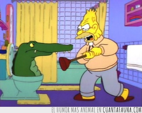 baño,cocodrilo,los simpsons