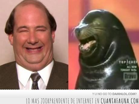 foca,hombre,papada,parecido,the office