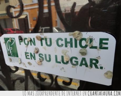 cartel,cerdo,chicles,pegar