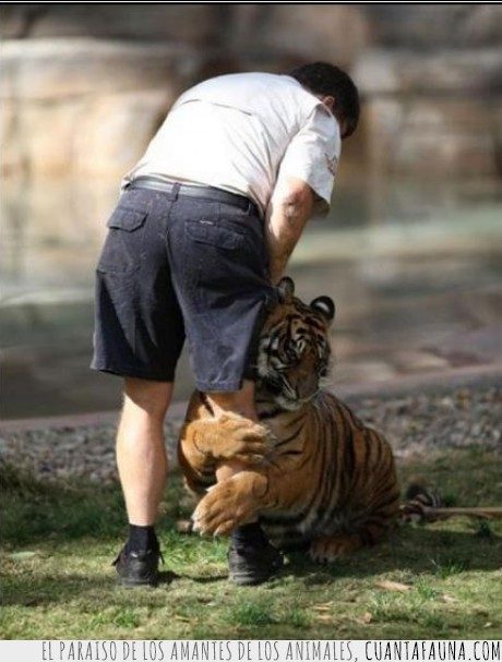 a,amigos,cmerme,comer,leon,no,no me dejes,prometo,tus,voler