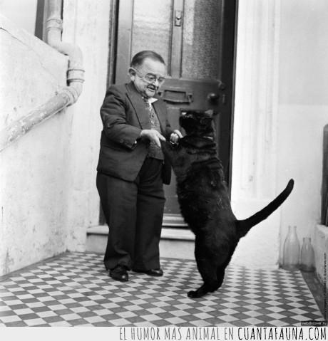 bailar,gato,Henry Behrens,hombre más pequeño del mundo