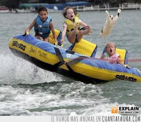 agua,barca,bote,contigo,favor,gato,llevame,mar,niños,por,señor,volar
