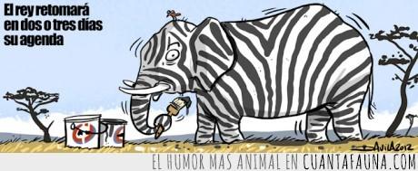 agenda,Elefante,pintar,pistola,rey,zebra