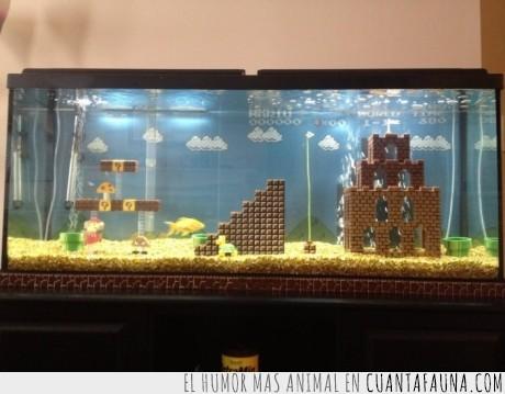 agua,bloque,castillo,juego,mario bros,pantalla,pecera,pez