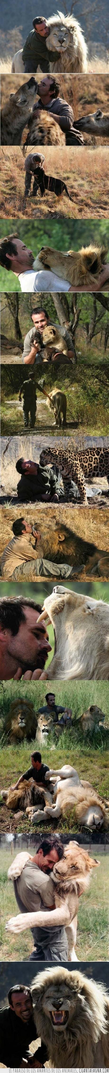 amigo,felino,guepardo,kevin richardson,leon,leopardo,pantera,whisperer