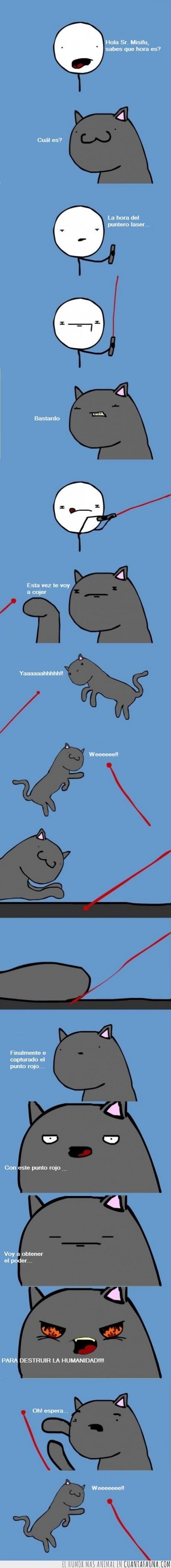 diversion,dueño,gato,laser,mal,puntero,punto,weeeeee