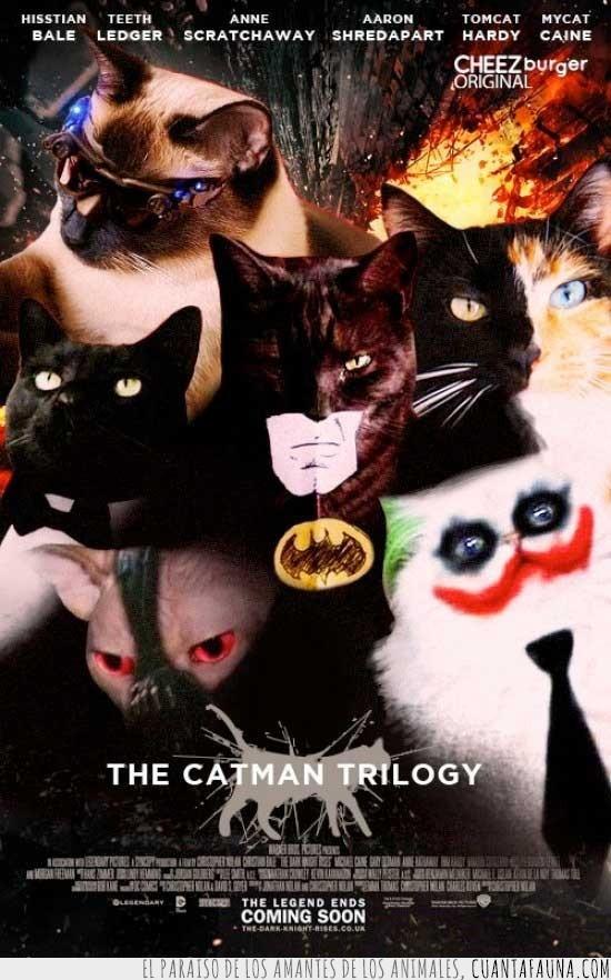 Batman,Dos caras,Gatos,Joker,Película