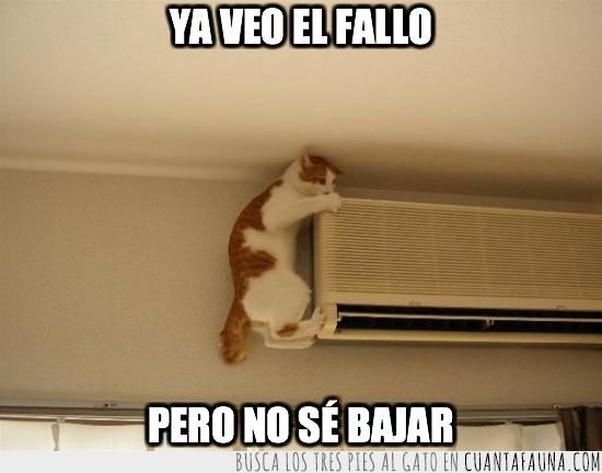 ahora bajar,aire acondicionado,gato,subir sabe