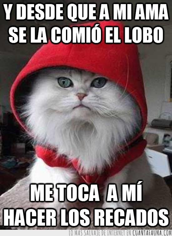 caperucita roja,Gato,lobos