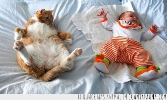 bebe,gordo,parecidos,tumbados