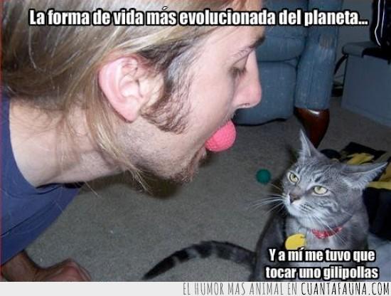 dueño,evolucionada,gato,gilipollas,humano