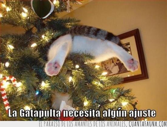 arbol,catapulta,empotrado,gatapulta,gato,lanzado,navidad
