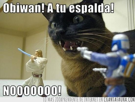 boba fett,espalda,gato,la guerra de las galaxias,obi wan,star wars
