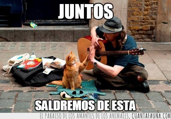 amigos,calle,callejero,crisis,gatito,guitarra,guitarrista