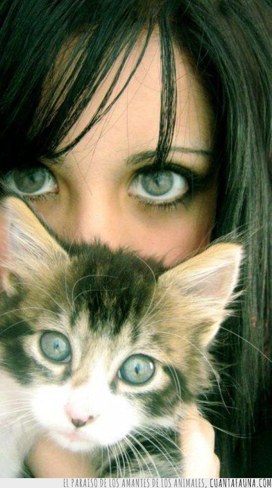 azules,chica,fija,mirada,ojazos,ojos