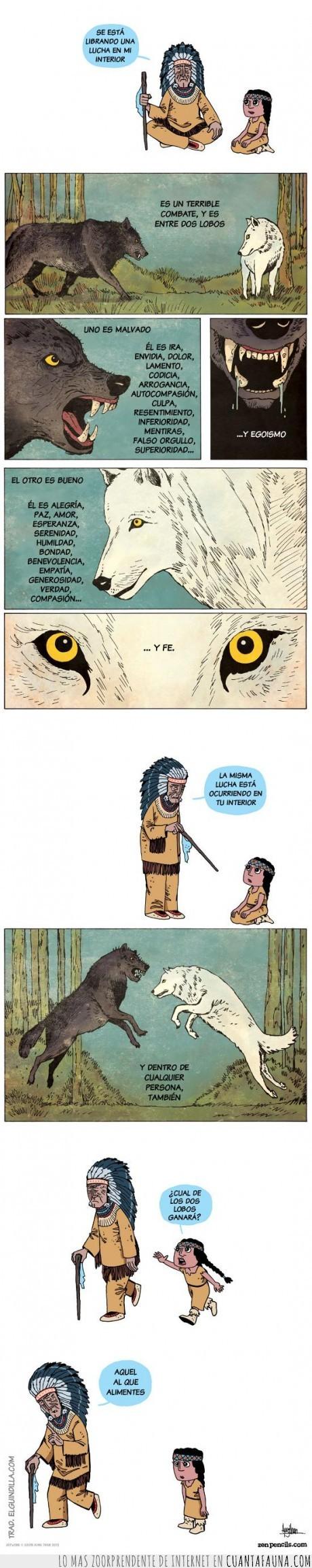 indio,lobo,moralidad,refrán