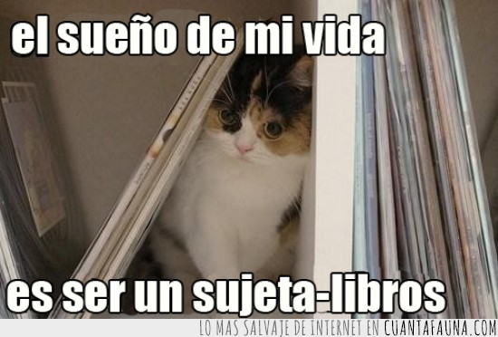 aguantalibros,estanterias,estudio,libros,sujeta-libros,sujetalibros