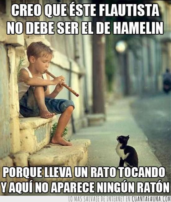 encantado,esperando,flauta,flautista,gato,hamelin,musica,niño,ratones
