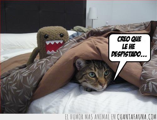cama,despistado,Domo-kun,escondido,gato,mantas,sabanas