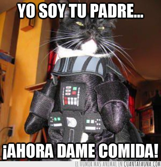 Atún,Comida,comilón,Darth Vader,guerra de las galaxias,padre,star wars