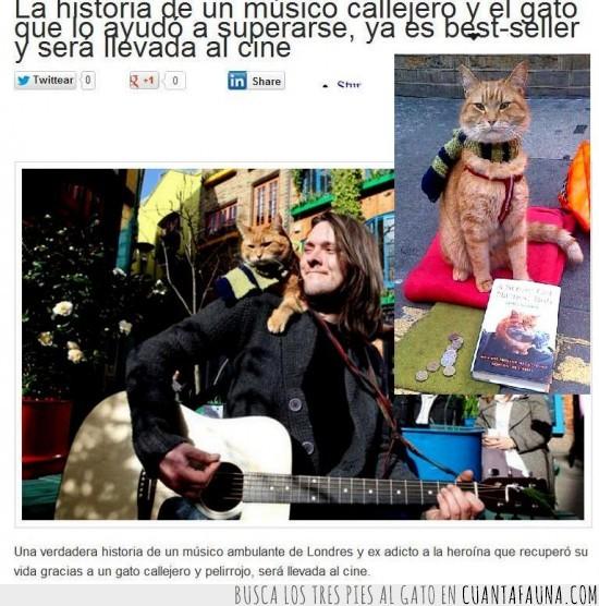 best-seller,callejero,gato,guitarrista,heroina,musico,pelicula,yonki