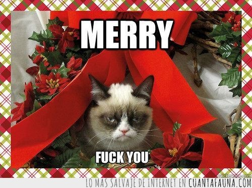 fuck you,gato,gato gruñon,grumpy cat,merry fuck you,navidad