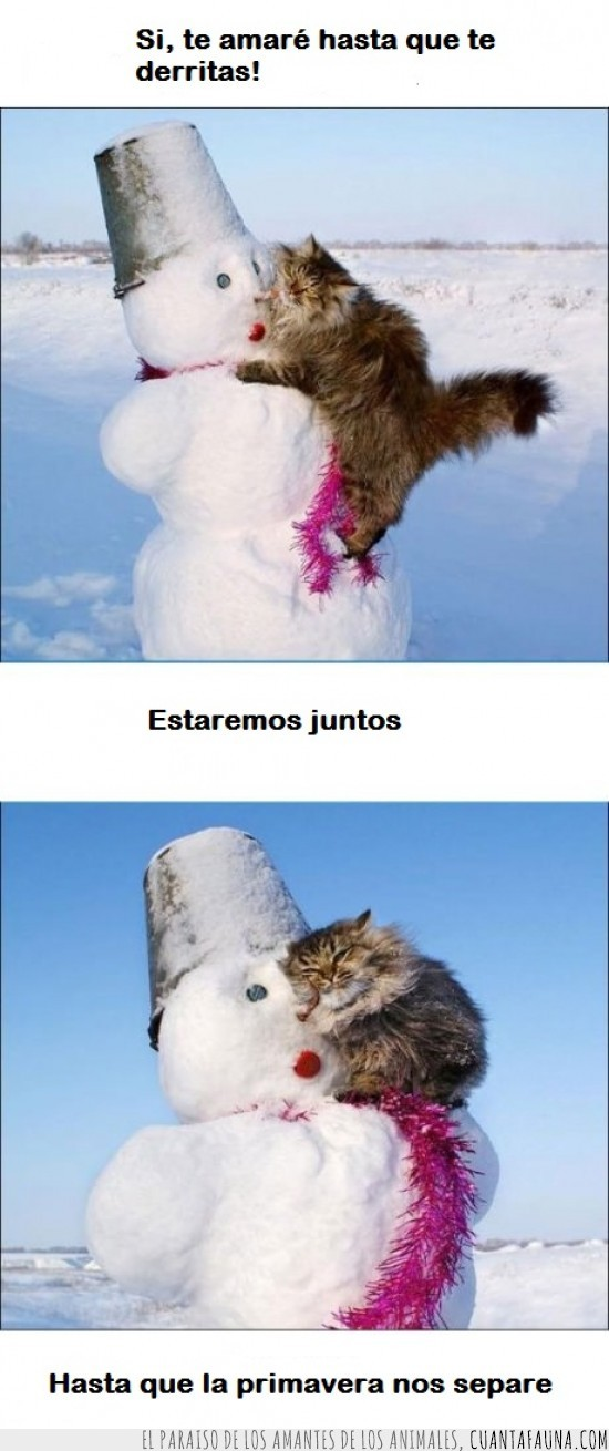 Amor,frio,invierno,muñeco de nieve,navidad,relacion