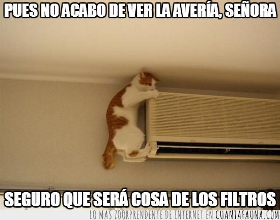 aire acondicionado,averia,ducha,filtros,Gato,mecanico,servicio,tecnico