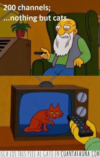 abuelo,canales,gatos,residencia de ancianos,simpsons,tele,viejo