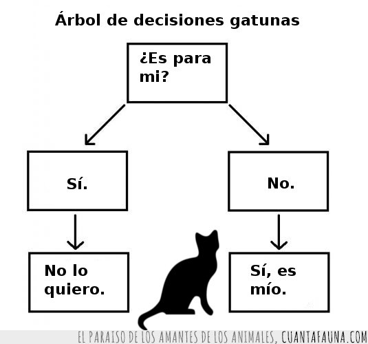 árbol,decisiones,gato,gatunas