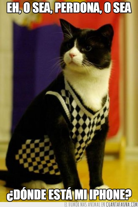 gato,hipster,hispcat,iphone,jersey,pijo,polo