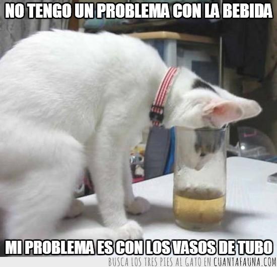beber,bebida,problema,vaso de tubo,vasos