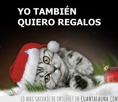 gatito,navidad,papa noel,regalos,santa claus