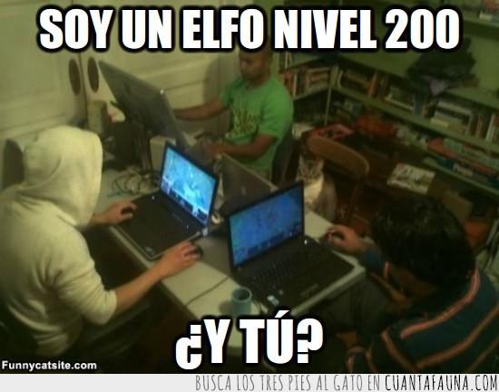 Elfo,Gamer,Gato,Laptop,Ordenador,Portatil,Videojuegos,WoW