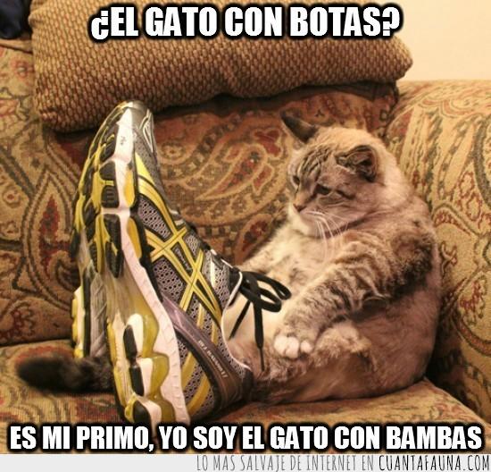 gato con bambas,gato con botas,mi primo,sofa,zapatillas deportivas