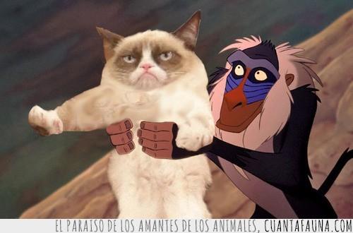 el rey leon,gato gruñon,grumpy cat,rafiki,simba
