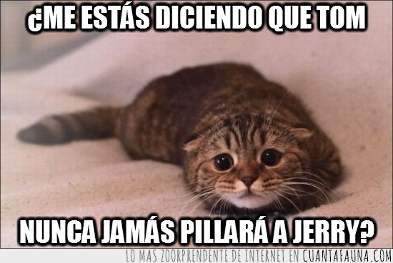 decepcion,deprimido,gato,pillar,tom y jerry,triste