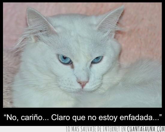 blanco,enfadada,enfado,expresion,mosqueo,ojos azules