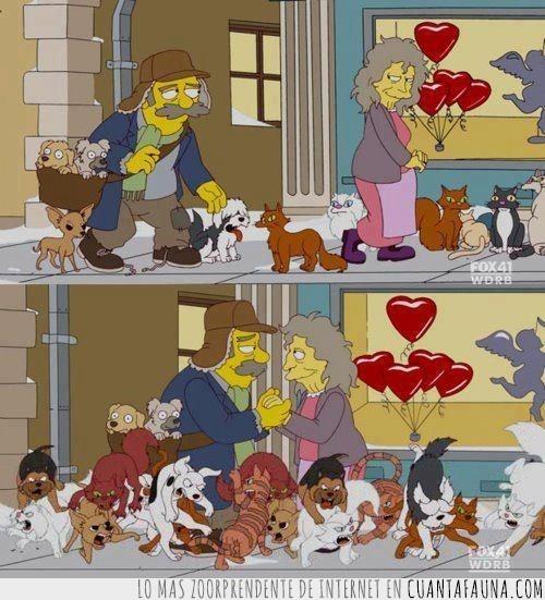amor,el loco de los perros,gatos,humanos,la loca de los gatos,los simpson,pelearse,perros